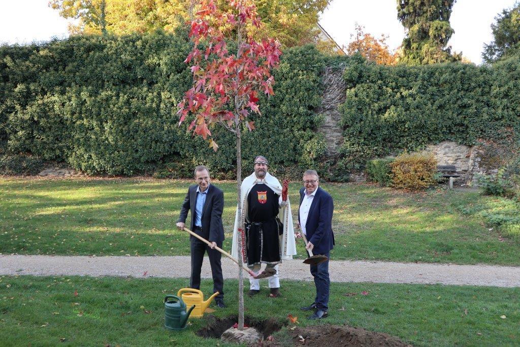 """Landrat-Dr.-Pföhler pflanzt einen gespendeten Baum zusammen mit """"Barbarossa"""" Bernd Linnarz und Bürgermeister Andreas Geron"""